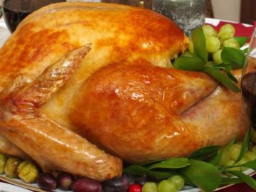 Turkey Thanksgiving