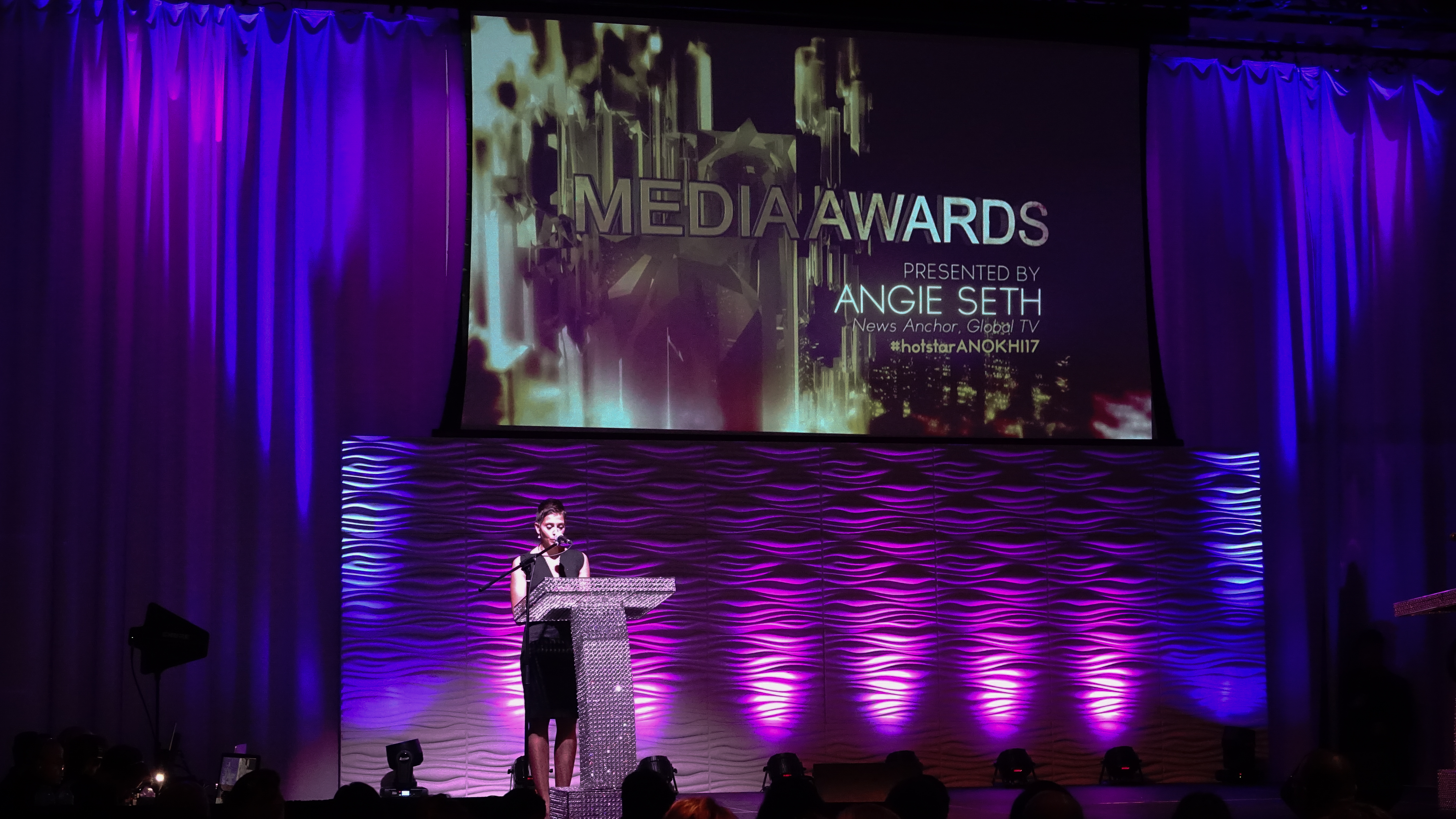 Host Angie Seth, Presenting The Media Awards
