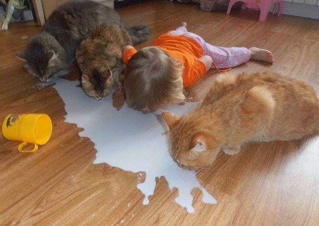 Will You Please Stop Crying Over Spilt Milk!